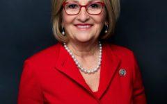 Representative blames pornography for school violence