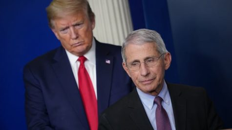 Trump ad uses Fauci's word; Fauci says he was taken out of context
